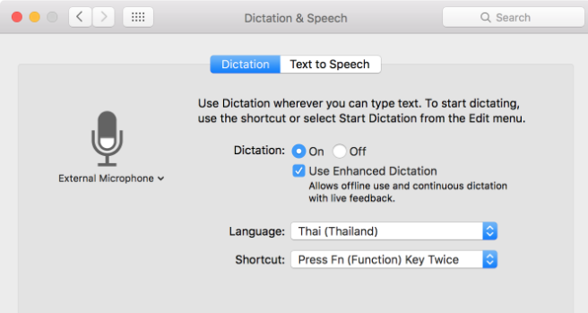 the screenshot of the apple dictation interface